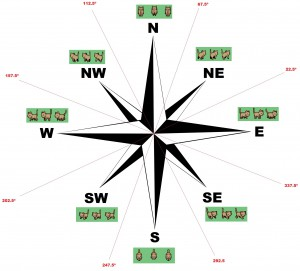 compass_rose_animations
